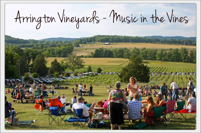 Arrington Music in the Vines
